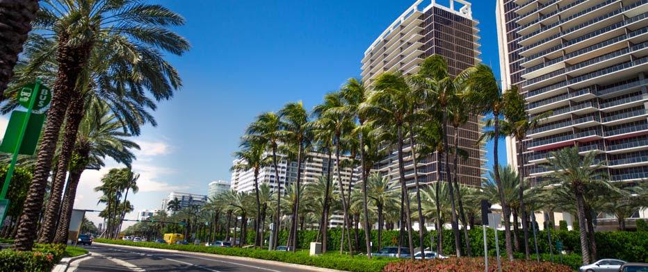 Miami Wheelchair Van Rentals From 66 Day