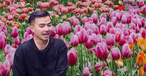 VALIDI TẬP 23 | VALI TOUR - Blogger Lý Thành Cơ say sưa với vẻ đẹp của Hà Lan