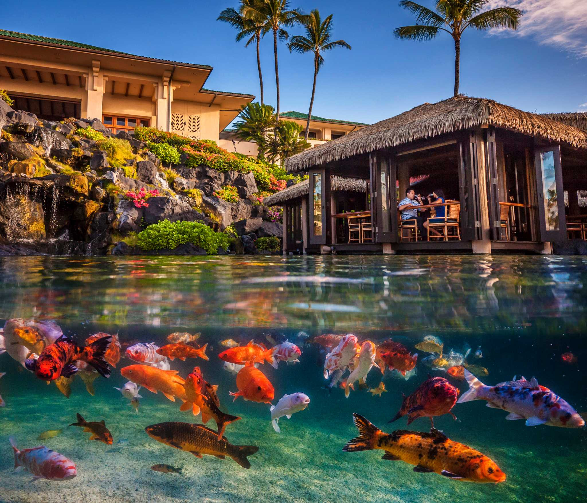 Hawaii resorts act as stewards with gardens land
