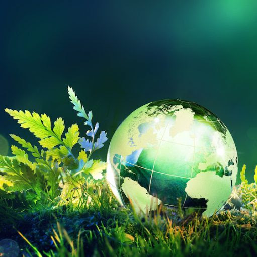 7 Earth Day Activities for the Family - Partnership for a Healthier America