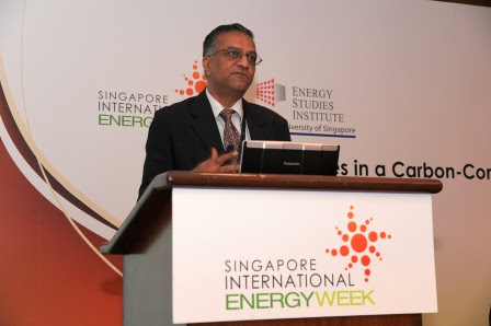 Carbon Taxes in Singapore: Causes and Consequences