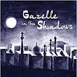 Gazelle in the Shadows by @MichellePeach16 (Illustrated by Janet Wylie) ~ a Review