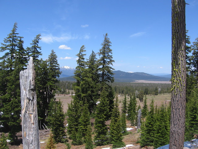 Scenery near Crater Lake