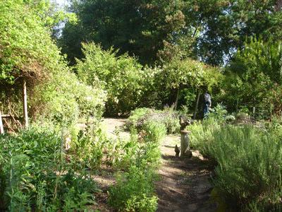 Garden-Visit-Near-the-Lucky-Mojo-Curio-Company