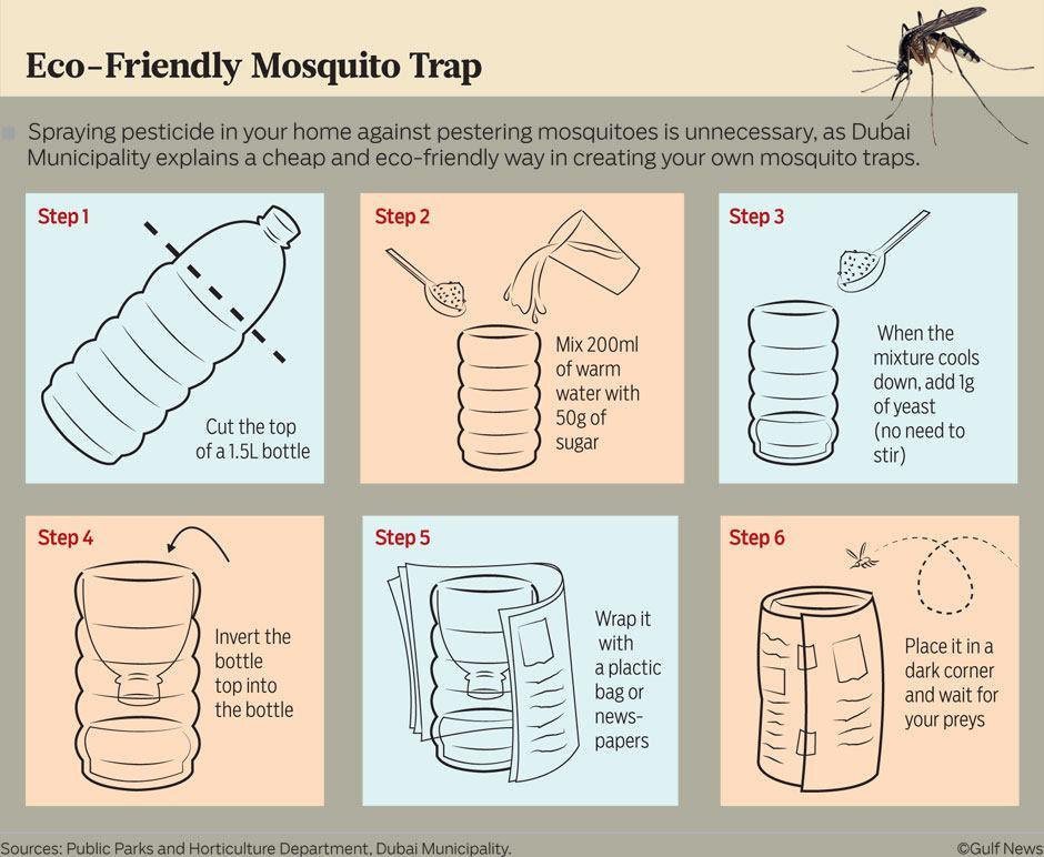 Projek perangkap nyamuk mesra alam DIY