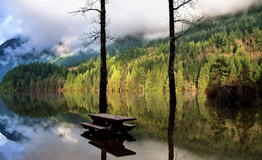 Autumn Flood At  Buntzen Lake by Alex Lyubar