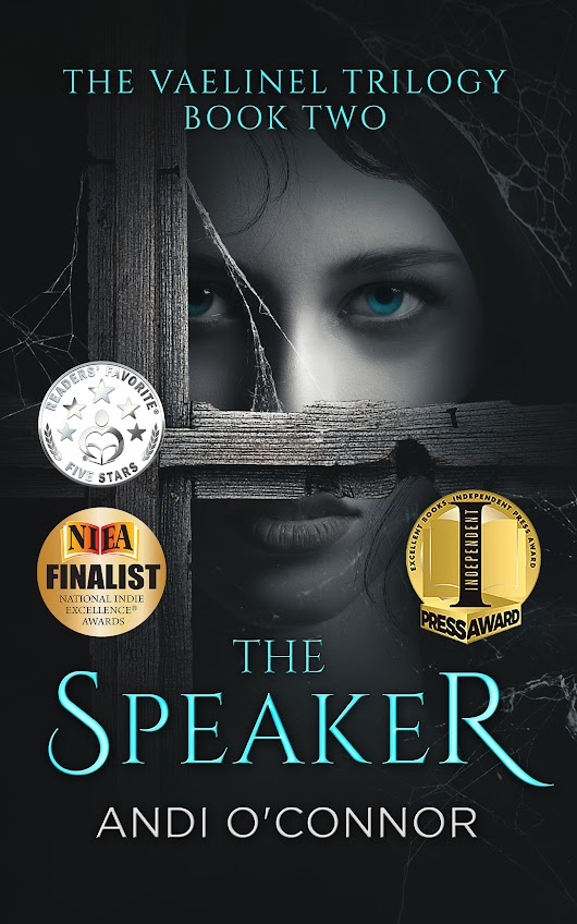 The Speaker by Andi O'Connor - christineyoungromancewriter.com