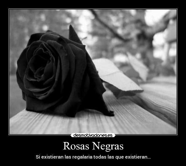 Rosas Negras Desmotivaciones
