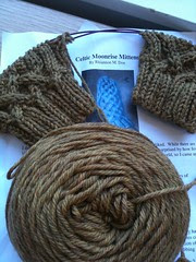 Celtic Moonrise Mittens