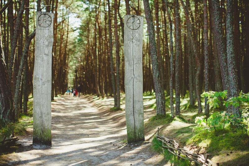 Танцующий лес на Куршской косе