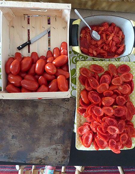 tomates à sécher 2