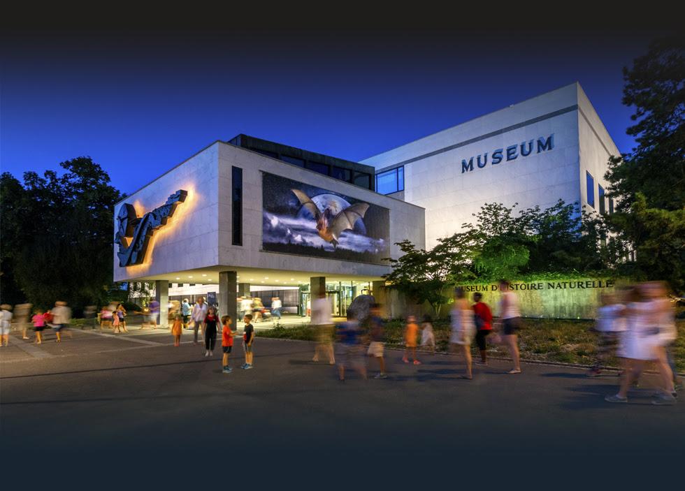 VISITEZ le plus grand Musée d'histoire naturelle de              Suisse