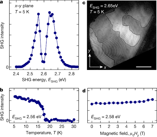 Magnetoelectric inversion of domain patterns | Nature