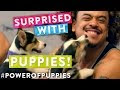 Surprising People With Puppies - Video