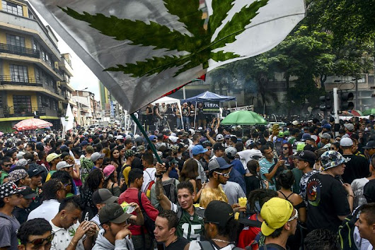 Amazing photos from the 2017 Global Marijuana March