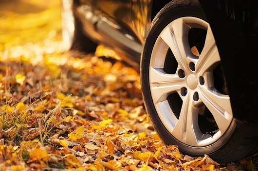 Update Your Auto Insurance for Fall | Mike Leonard