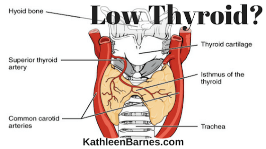 Low Thyroid: WHY? What to do? – KathleenBarnes.com