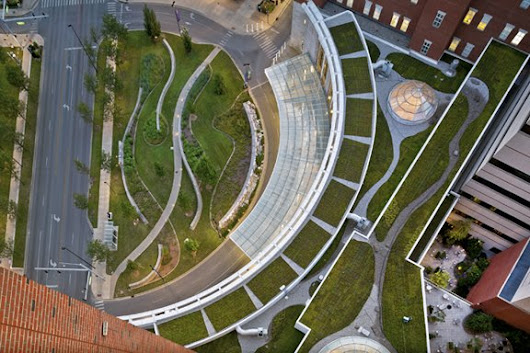 Green Roofs Take Root