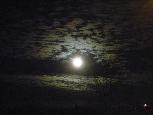 DSCN0134 _ Moon Rise, December 2013