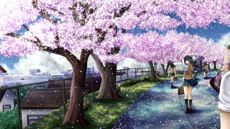 Cherry blossom path by ilolamai