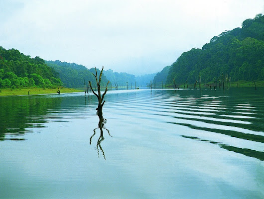 Thekkady an Ideal Place for boating through Periyar Lake