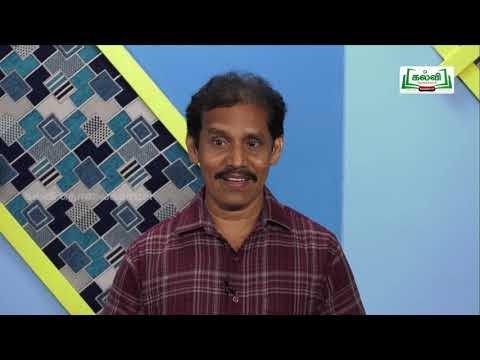 முப்பரிமாணம் Std 11 TM உயிரி விலங்கியல் Respiration| Kalvi TV