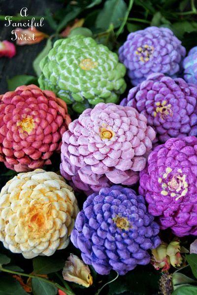 Pinecone flowers 7