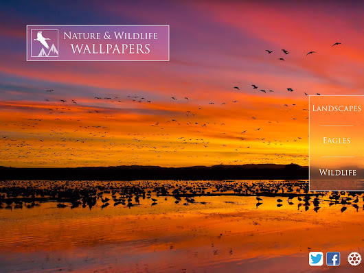 Nature & Wildlife Wallpapers