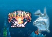 Игровой автомат Dolphins Pearl.Игровой автомат Dolphins Pearl — это разработка компании Novomatic, она вышла в мае года.Тематика слота Жемчужина Дельфина — подводный мир.