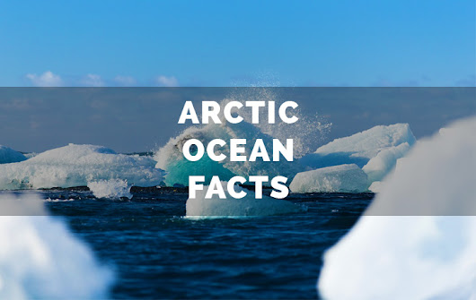 Arctic Ocean Facts | The 7 Continents of the World