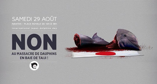 « Japan Dolphin Day » 2015 : dites NON au massacre des dauphins