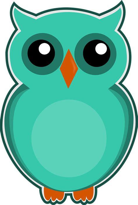 burung hantu biru hijau gambar gratis  pixabay