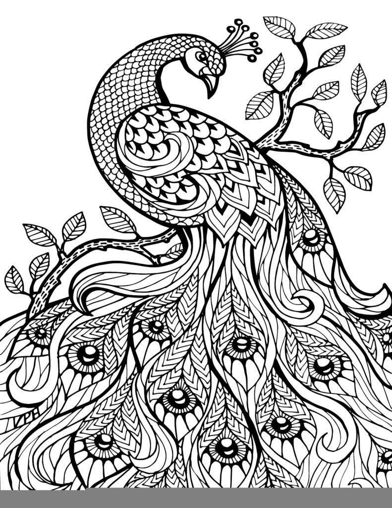 660+ Coloring Books For Adults Free Pdf Free Images