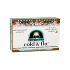 Source Naturals Wellness Cold Flu 48 Tablets