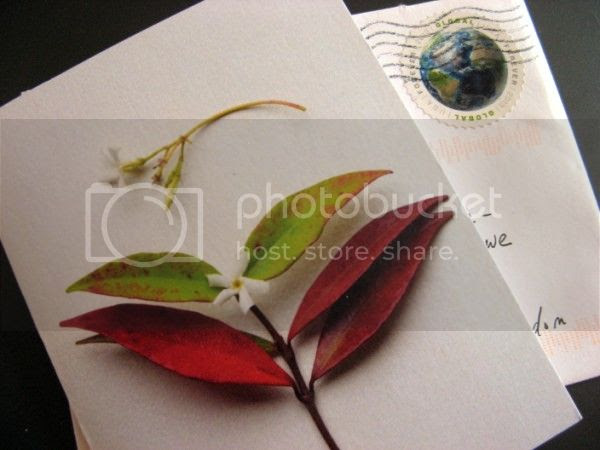 Photo-card - Rinda @ Gallo Organica