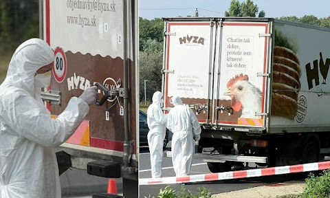 70 Migrants locked in a Frozen Chicken Van found all dead and Unresponsive .