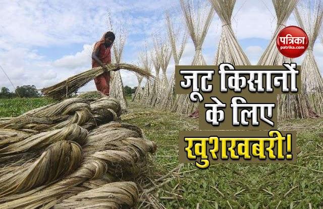 जूट किसानों पर मेहरबान हुई सरकार, नए ऐलान से 3.7 लाख कामगारों को होगा फायदा