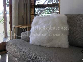 photo woolcushioncovers_zpsf2854932.jpeg