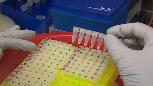 Pesquisa de vírus Ebola
