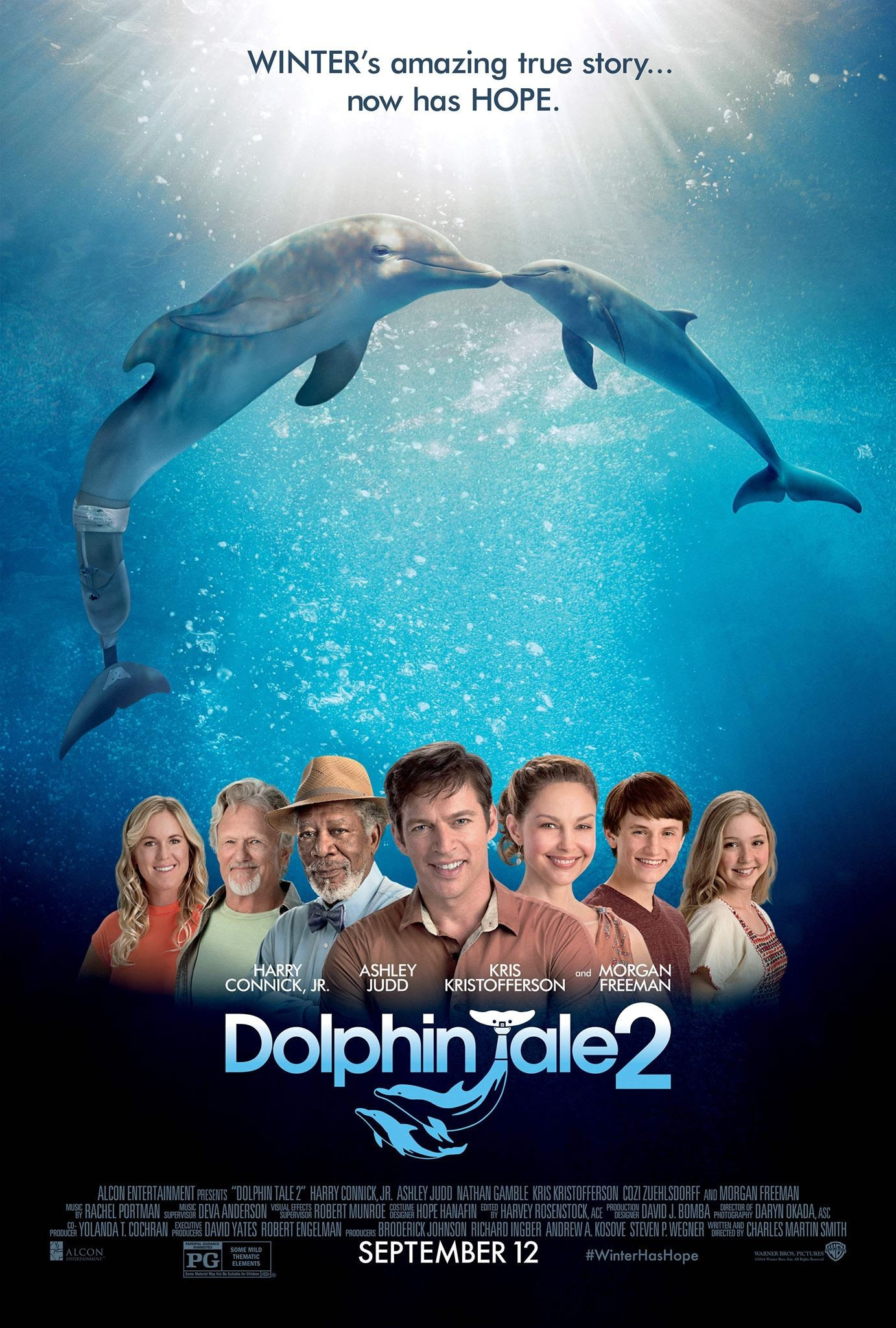 Image result for dolphin tale 2 poster