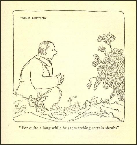 Watching certain shrubs