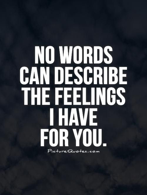 No Words Can Describe The Feelings I Have For You Picture Quotes