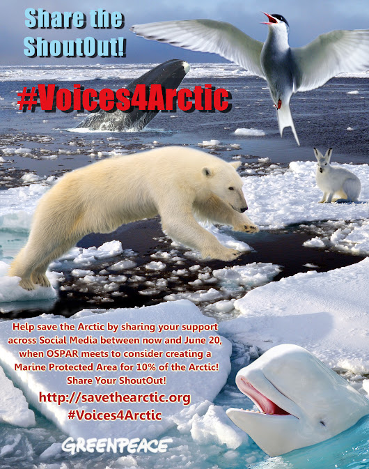 #Voices4Arctic