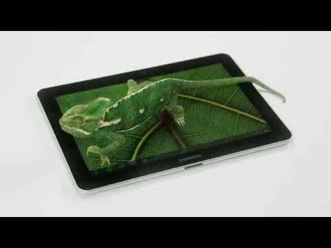 VIDEO/ Du-ți prichindelul să vadă expoziția de reptile vii de la Muzeul Antipa! Intrarea e GRATUITĂ