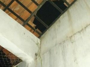 Em Parnaíba, presos usaram cordas e fios na tentativa de fuga (Foto: Divulgação/Polícia Militar)