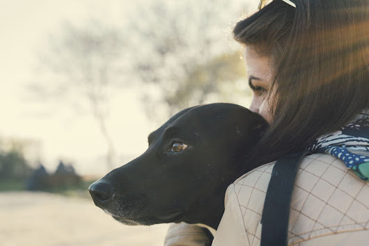 Millennials Now Have More Pets Than Any Other Generation - Petful