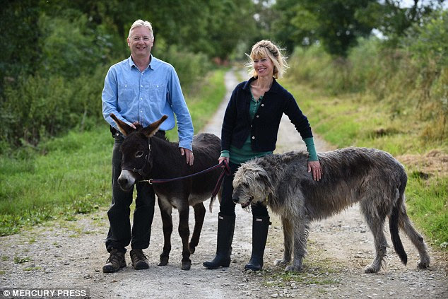 Walking crew: Dougie the miniature donkey with his owners Tom and Cal stockbridge and their dog Griff
