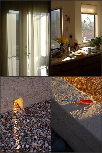 the light in Arizona