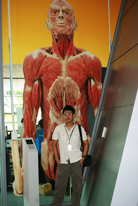 bodyworlds1JPG
