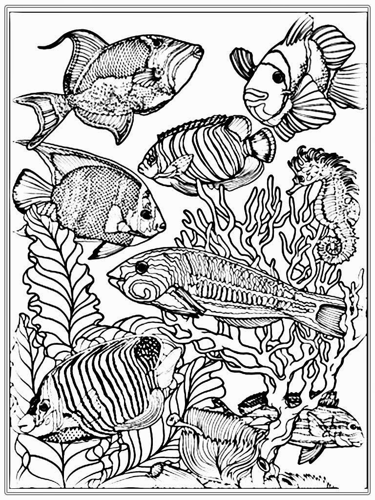 Realistic Coloring Pages For Adults at GetColorings.com ...